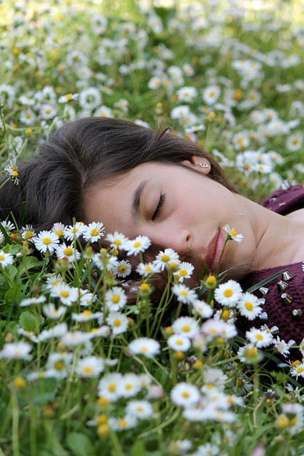 a woman asleep in a field of flowering chamomile