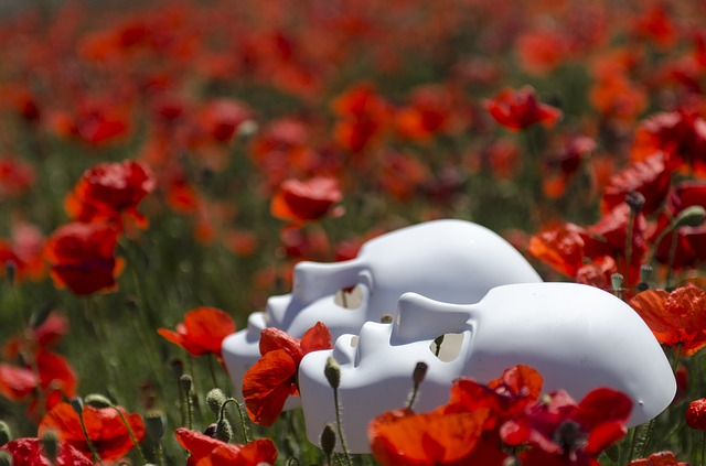 Two white theatre masks are laying in a field of red flowers.