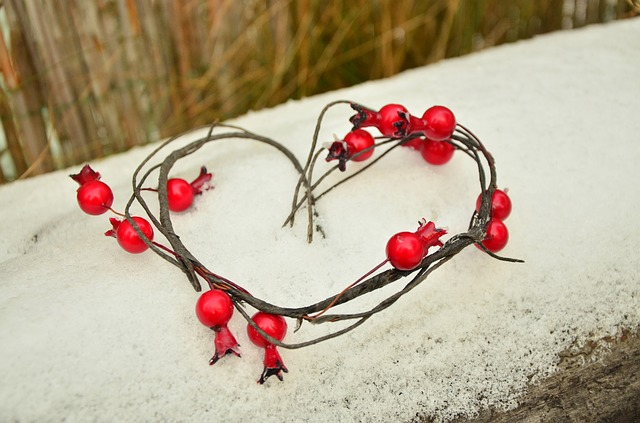 A heart made of vines with red berries sits on top of a snowy ledge.