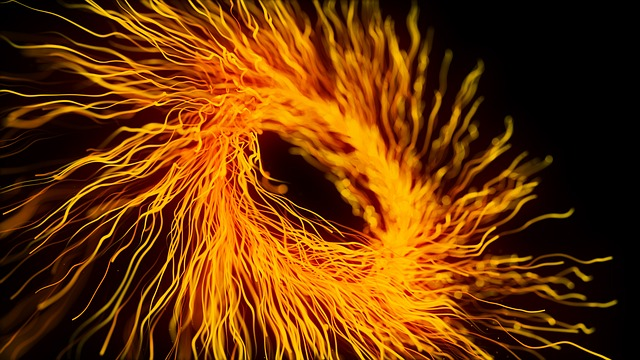 An image of a bright orange ring of fireworks against a black background.