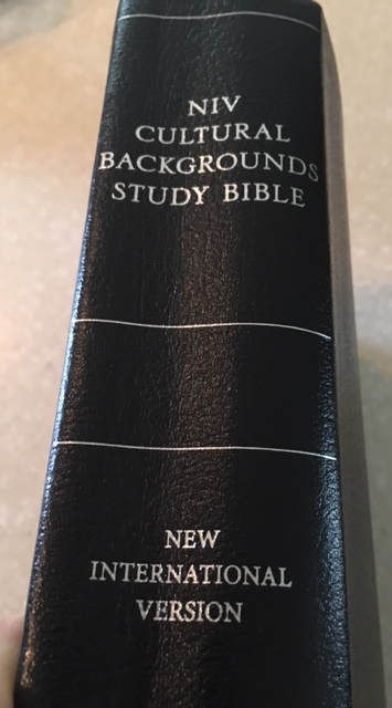 A photo of the spine of the NIV Cultural Backgrounds Study Bible