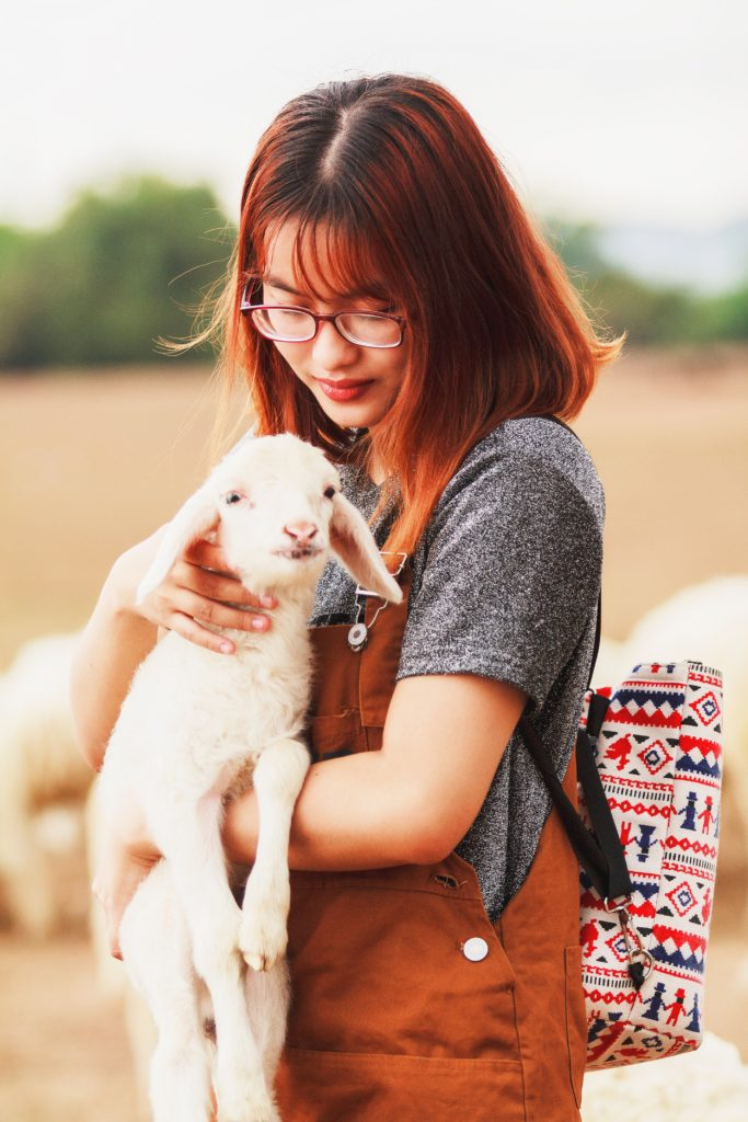 A girl tenderly holds a lamb in her arms.