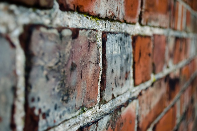 a close-up of the mortar in a brick wall