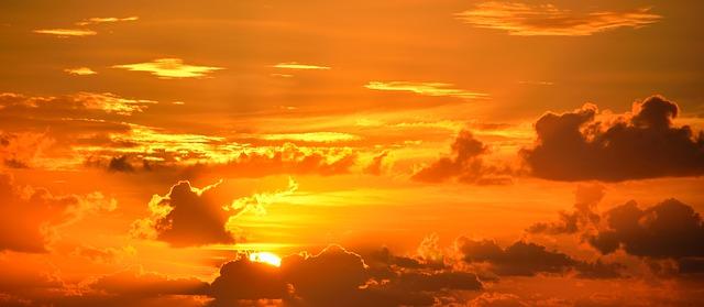 a vibrant orange sky