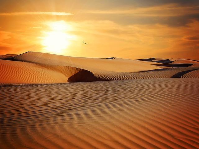 An image of sunrise over an endless desert landscape.